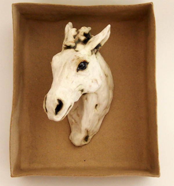 Horse Portrait in Box